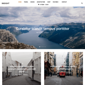 WPZoom Insight WordPress Theme