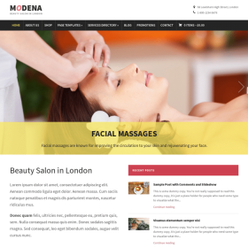 WPZoom Modena WordPress Theme