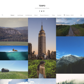 WPZoom Tempo WordPress Theme