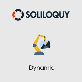 Soliloquy Dynamic Addon 2.3.3