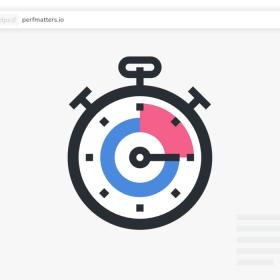 Perfmatters WordPress Performance Plugin
