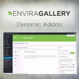 Envira Gallery – Dynamic Addon 1.5.9