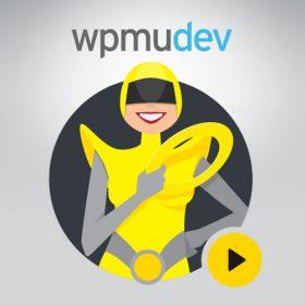 WPMU DEV Hummingbird Pro 2.7.1