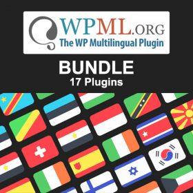 WP Multilingual (WPML) – BUNDLE