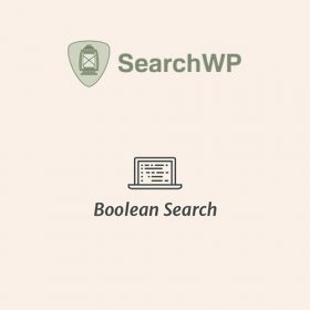 SearchWP Boolean Search Query