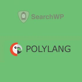 SearchWP Polylang Integration