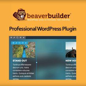 Beaver Builder Pro 2.4