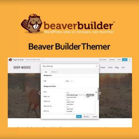 Beaver Themer for Beaver Builder 1.3.2.3