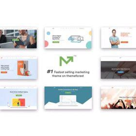Marketing Pro – SEO WordPress Theme for SEO, Agency
