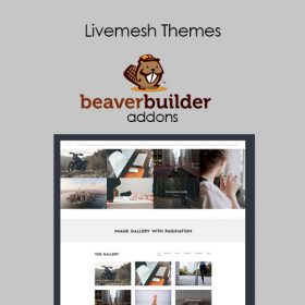 Livemesh Addons for Beaver Builder 2.6.1
