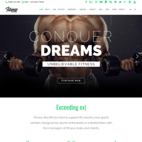 VisualModo - Fitness WordPress Theme