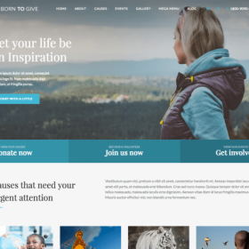 Born To Give - Charity / Crowdfunding WP Theme