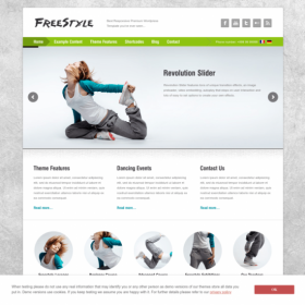 AIT - Freestyle WordPress Theme