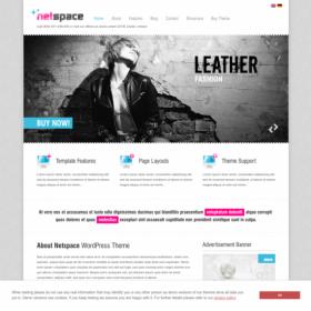 AIT - Netspace WordPress Theme