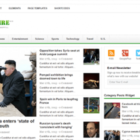 Theme Junkie Newswire Theme