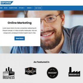 CyberChimps - Response Premium WordPress Theme