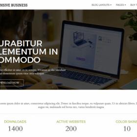 CyberChimps - Responsive Business WordPress Theme