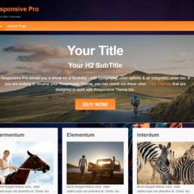 CyberChimps - Responsive Pro WordPress Theme