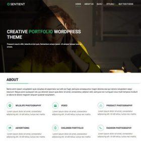 CyberChimps - Sentient WordPress Theme