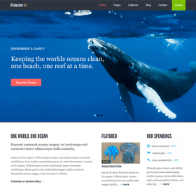 Kause – Multipurpose WordPress Theme 1.0.44
