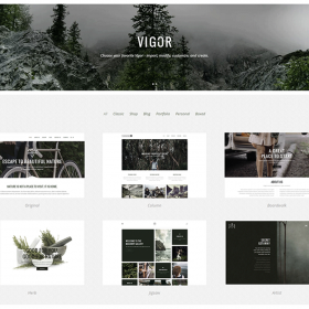 Vigor – Fresh Multi Concept Theme 3.1