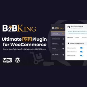 B2BKing – The Ultimate WooCommerce B2B & Wholesale Plugin 3.3.5