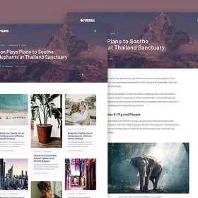 MyThemeShop Personal WordPress Theme 1.0.8